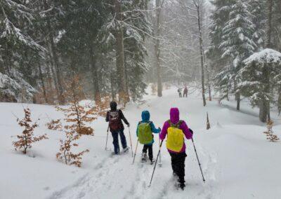 Raquettes à neige pour le réveillon, forêt de Durbon