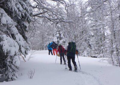 Raquettes à neige pour le réveillon, poudreuse en forêt
